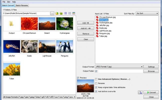 FastStone Photo Resizer 3.5